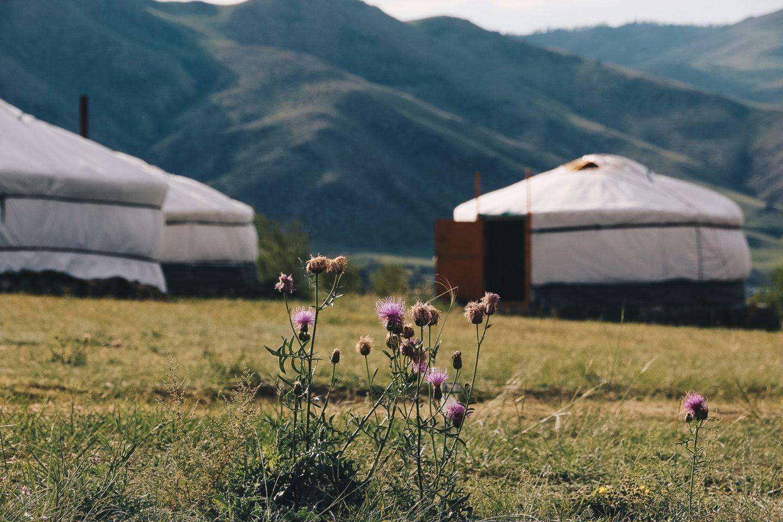 Mongolie | Le guide pratique pour organiser votre voyage
