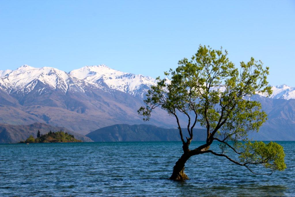 Nouvelle Zélande: Itinéraire sur l'île du Sud