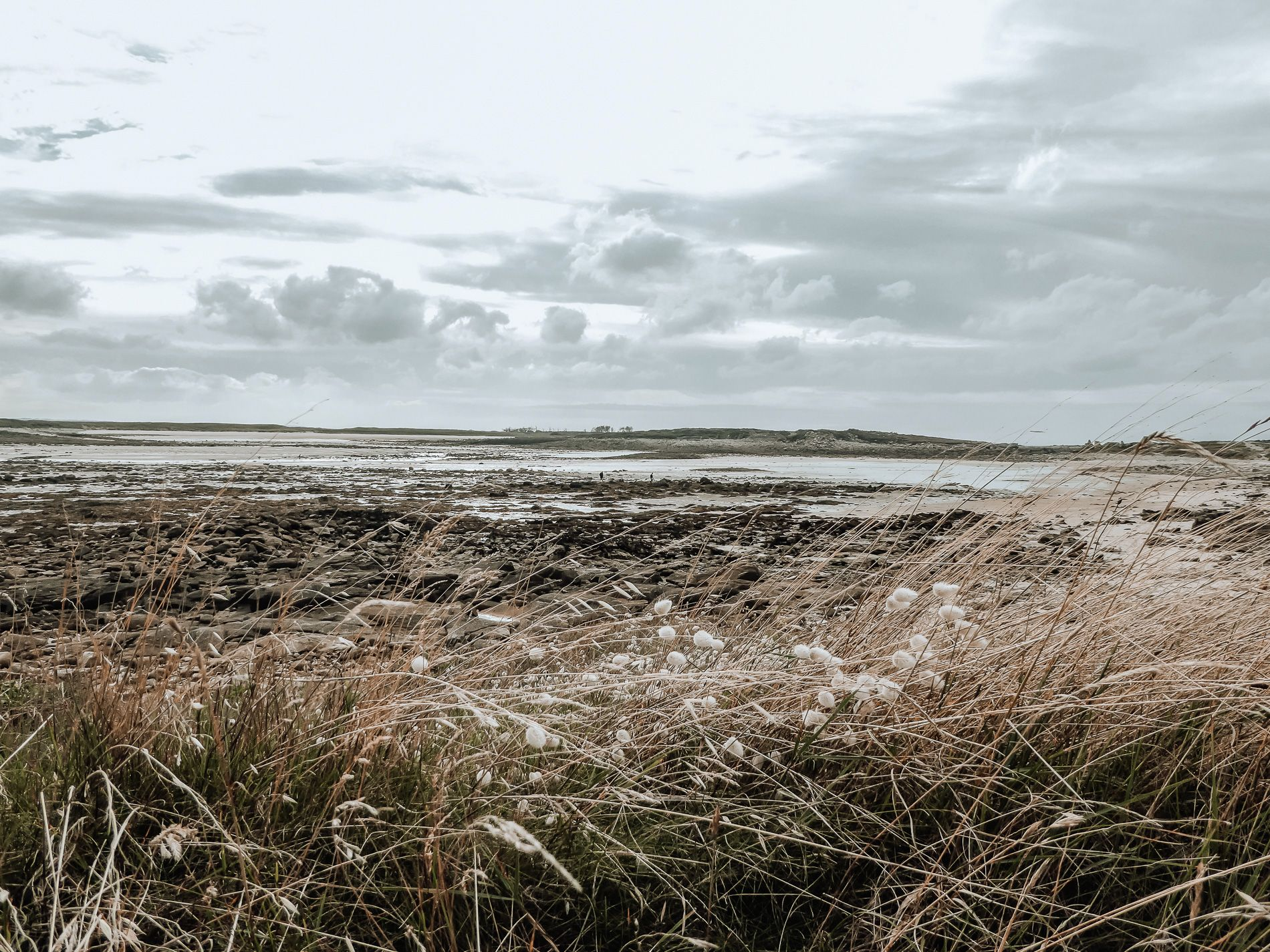 Bretagne - cote de granit rose - conseils - mademoiselle - voyage - blog - ile grande - trebeudun