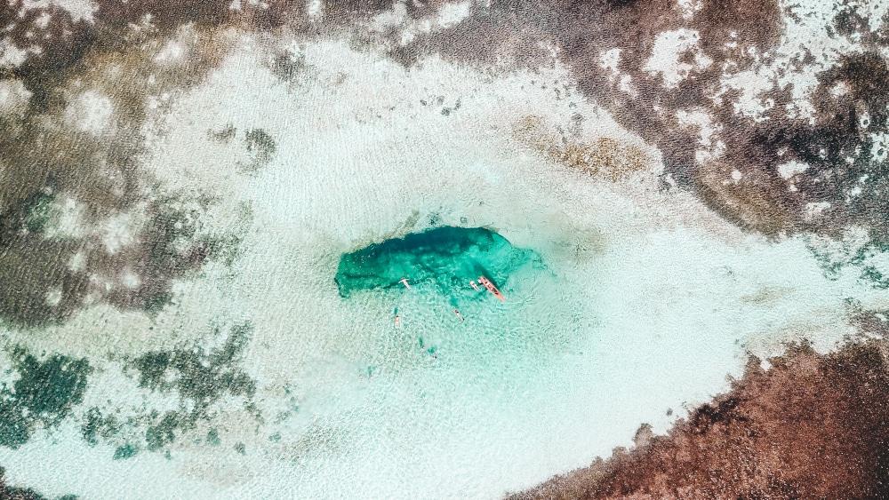 Grand Bahama: 6 expériences à vivre sur l'île