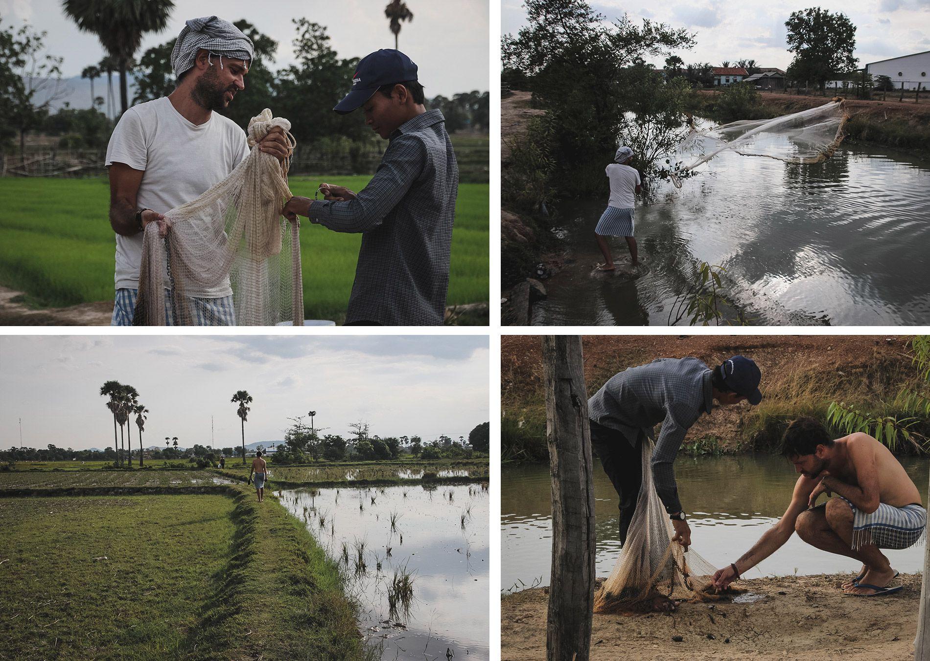 Cambodge | chez l'habitant | rizière