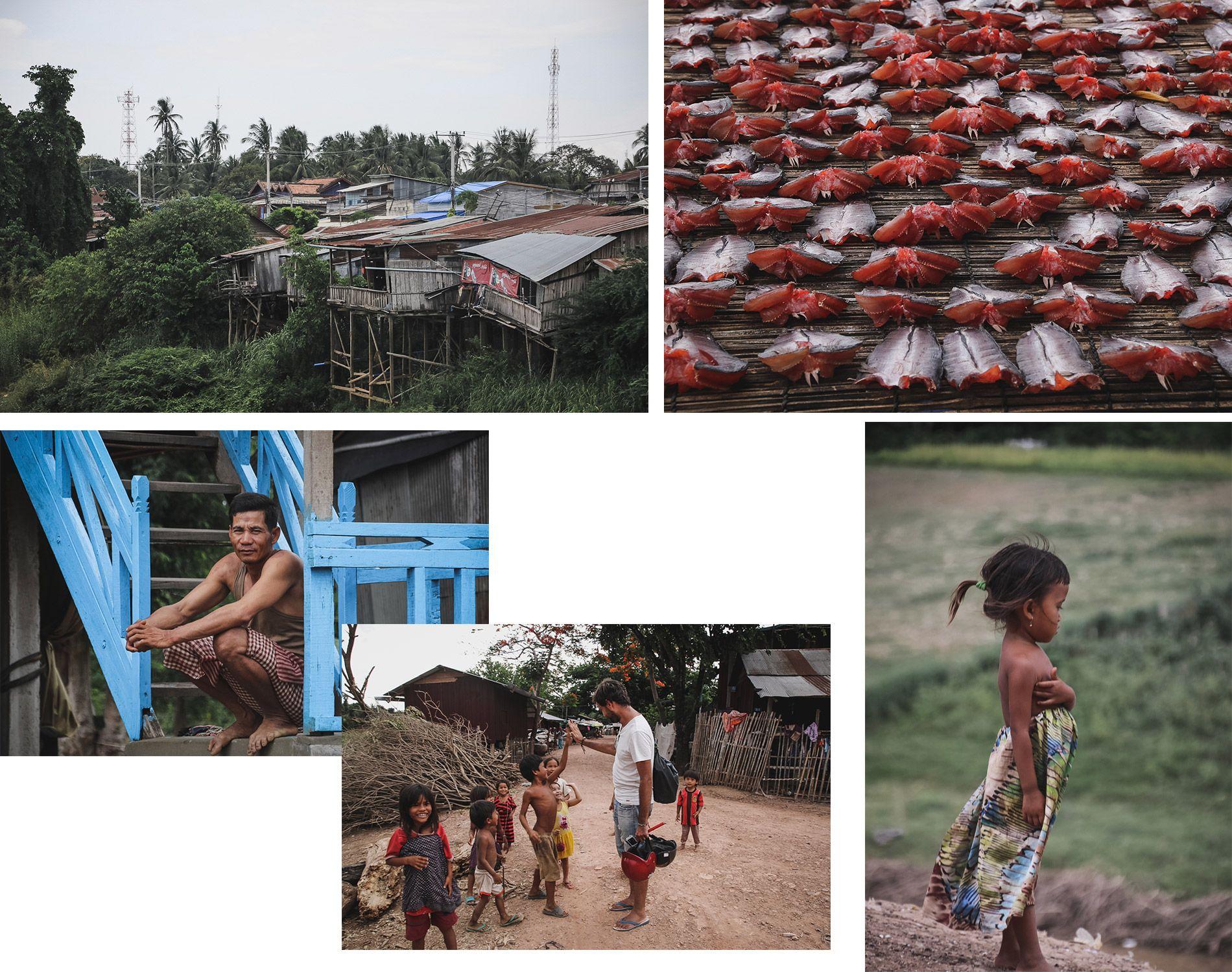 Cambodge | Battambang | Campagne