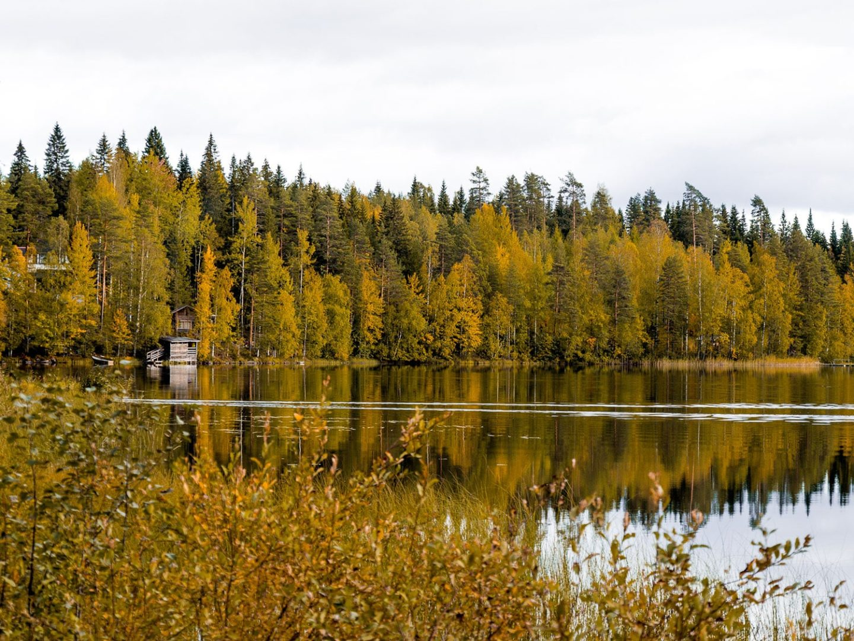 La Finlande à l'automne | Jyväskylä & Lahti | Région des Grands Lacs