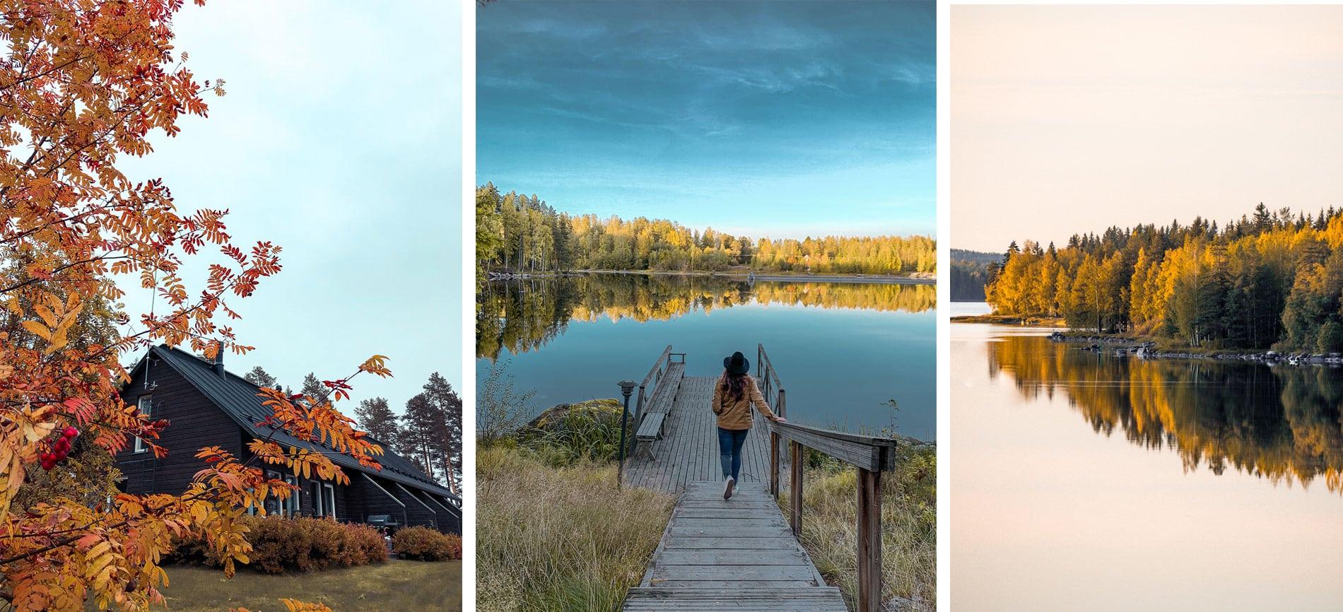 Finlande | région grands lacs |automne