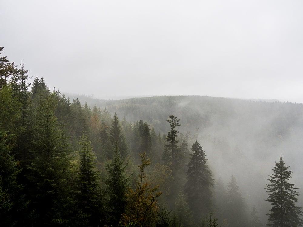 Itinéraire: 5 jours en Forêt Noire