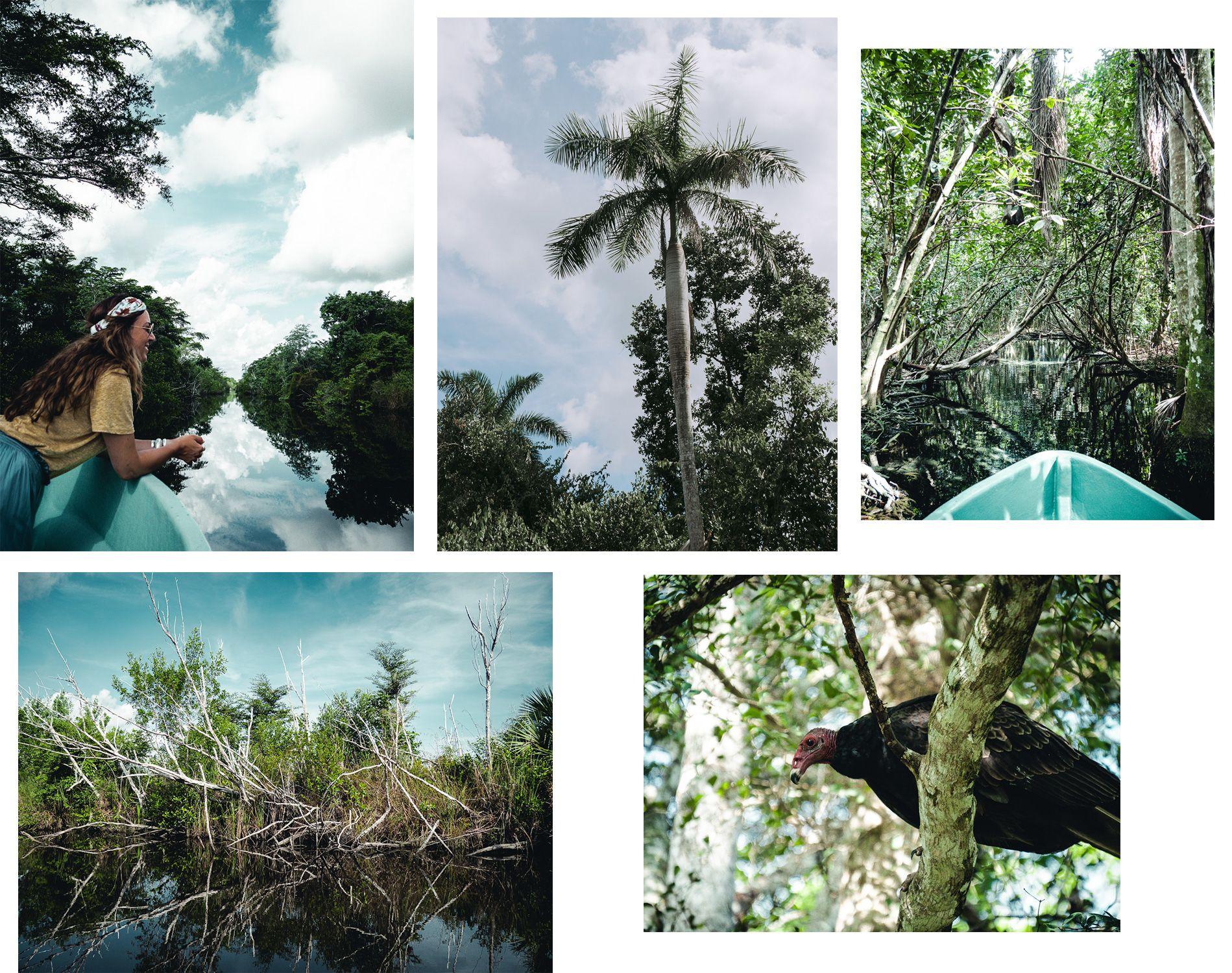Cuba | carte | cienaga de zapata | excursion nature