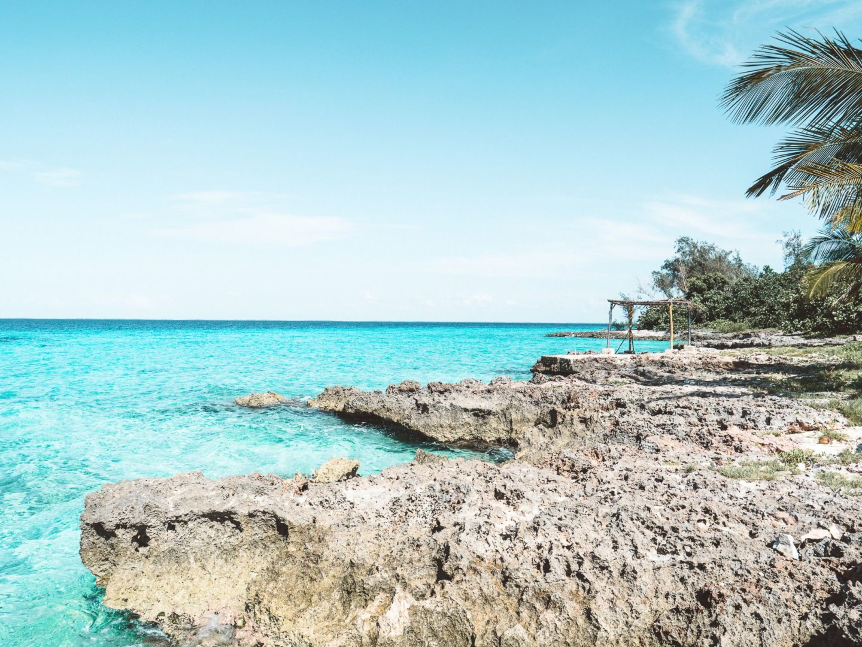 Playa Larga & Playa Giron | Découvrez les espaces naturels de la Cienaga Zapata