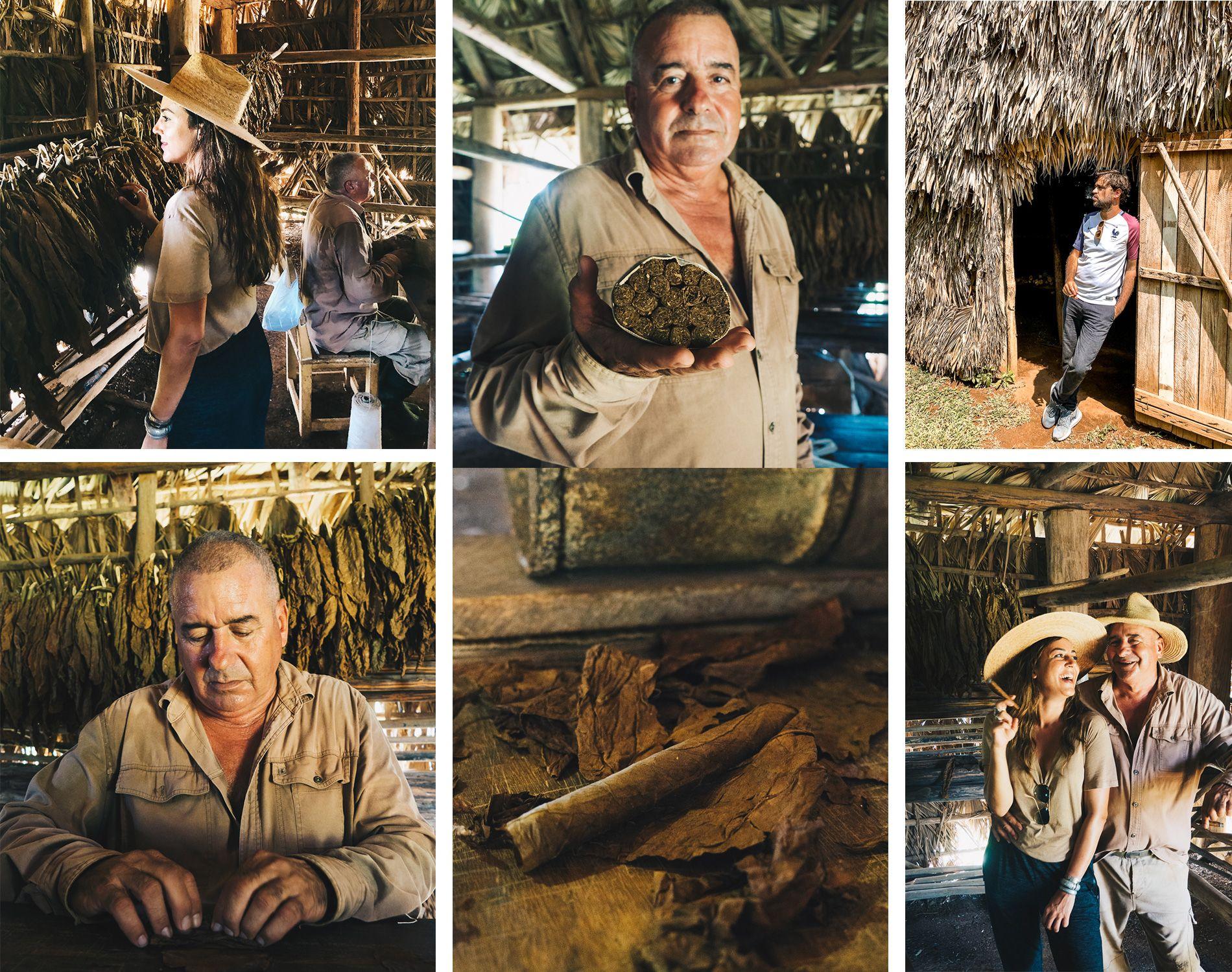 Cuba   Vinales   parc national de Vinales   cigare