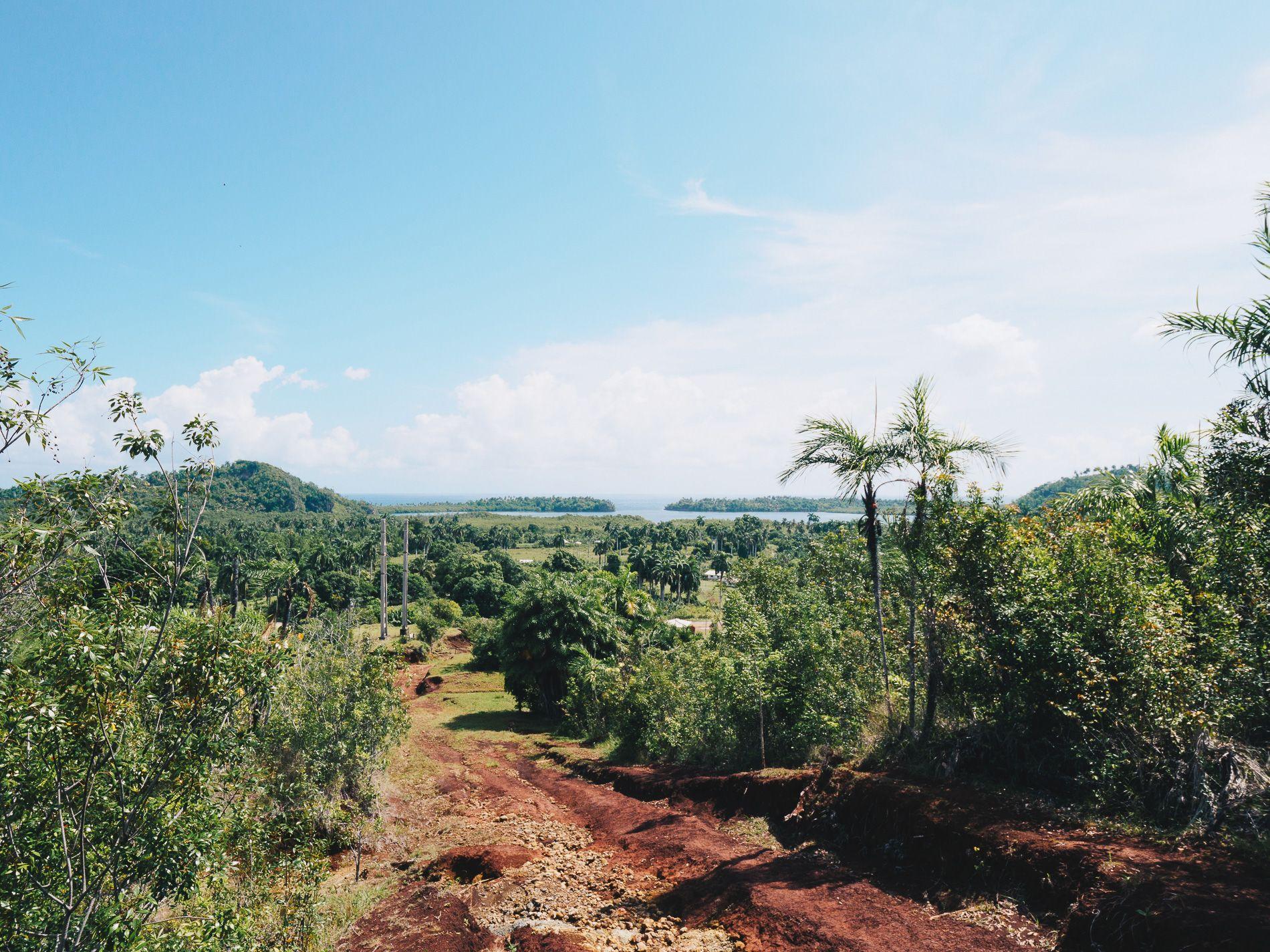 Cuba | parc alexandro de Humbold | Baracoa | nature | trek